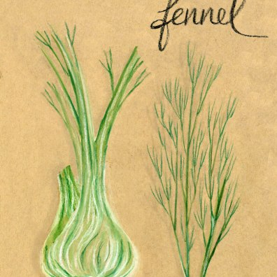 fennel-fronds-webx