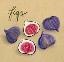 figs-final